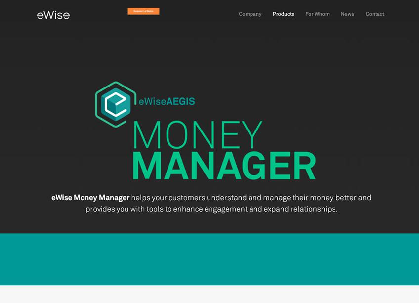 eWise Money Manager screenshot