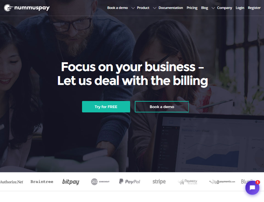 Nummuspay.com screenshot