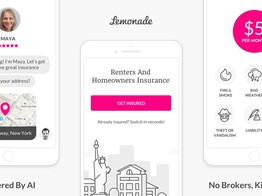 Lemonade has launched pet insurance following a successful IPO image