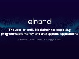 Elrond – Infrastructure for the New Digital Economy image