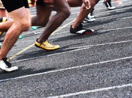 Paxos Standard Emerges as Early Leader in Stablecoin Sprint image