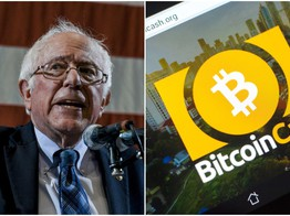 Bernie Fan Sniffs Out Bitcoin Cash Stash, Hilariously Exposes Wallet Key image