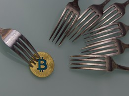 Bitcoin Cash: Where BCH Stands the Day after the Hard Fork image