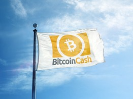 "Bitcoin Cash Spikes 12%: Is the Anticipated ""Altcoin Season"" Imminent? image"