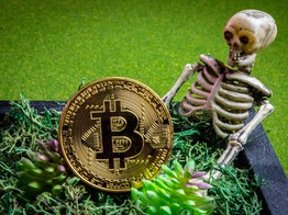 'Worthless' Bitcoin Has Entered Death Spiral: Finance Professor image