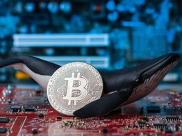 Why You Shouldn't Worry about Crypto Whales Crashing the Bitcoin Price image