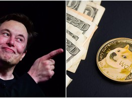 How is Elon Musk's Favorite Cryptocurrency, Dogecoin, Performing in 2019? image