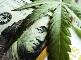 Canopy Growth Delay Raises Brutal Question: Will This Pot Stock Ever Turn a Profit? image