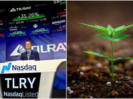 Smoked Out Cannabis Stock Tilray Could Get High on YOLO image
