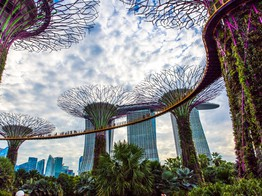 Singapore's Tax Agency Proposes to End GST on Cryptocurrencies - CoinDesk image