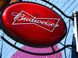 Budweiser Owner Invests in Blockchain Startup Working to Alleviate Poverty - CoinDesk image