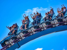 Thrill-Seeking Drives Investors to Trade Crypto, Study Finds - CoinDesk image