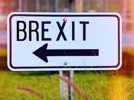 Have Your Say: Seedrs Surveys their Community on Brexit image