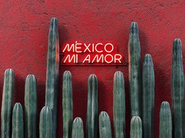 Banks in Mexico May Follow Global Fintech Trends by Integrating International Payment Providers, Personal Finance Tools, Industry Exec Predicts image