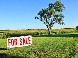 FinTech Offers New Ways for Individual Investors to Buy Into Farmland image