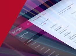 Two private equity firms acquire Irish fintech Fenergo in $600m deal image