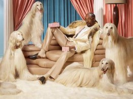 Klarna welcomes Snoop Dogg as new shareholder image