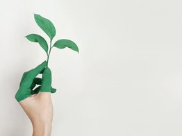 Meniga Brings in $11.8 Million Investment to Build Out Green Banking - Finovate image