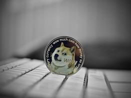 Dogecoin Price: Gains Loom on the Horizon- NullTX image