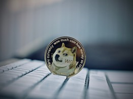 Dogecoin Price Rises Again as Traders Expect Major Bullrun - NullTX image