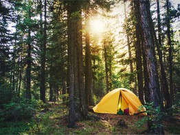 Online Marketplaces Find a Niche With Campsites | PYMNTS.com image