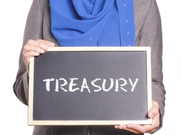 TreasuryXpress, Hedgebook Treasury Partnership | PYMNTS.com image