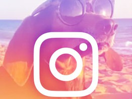 Instagram Campaigns Seek Emotional Connections for Banking Brands image