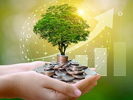 Is Eco-Friendly 'Green Banking' a Sustainable Strategy? image