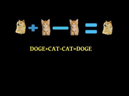 Plz No Cat: The Future of Crypto Disputes Is Being Decided By Doges - CoinDesk image