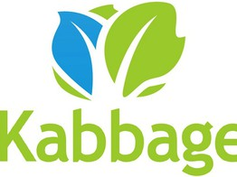 Kabbage to Acquire Orchard image