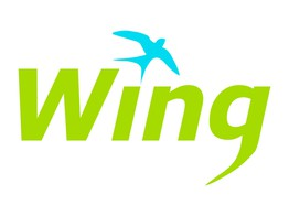 Behind the Idea: Wing | The Fintech Times image
