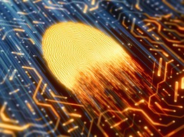 Paysafe: The Growth of Biometric Authentication Under SCA | The Fintech Times image