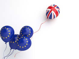 Mollie Research Finds EU and UK Merchants Expect to Overcome Brexit Challenges in 2021 | The Fintech Times image