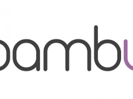 Get To Know Your Benzinga Global Fintech Awards Nominee: Bambu image